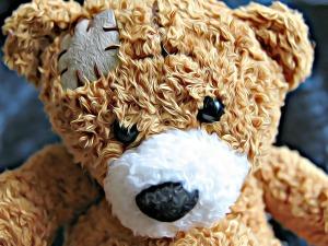 bear-vargasz Verletzung